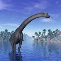 Brachiosaurus dinosaur in a tropical climate by Elena Duvernay - various sizes