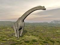 Brachiosaurus dinosaur walking in grassy landscape by Elena Duvernay - various sizes