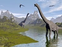 Brachiosaurus dinosaurs walking in a stream on a beautiful day by Elena Duvernay - various sizes