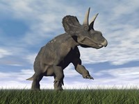 Nedoceratops dinosaur grazing in grassy field by Elena Duvernay - various sizes