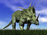 Styracosaurus dinosaur walking in the grass by Elena Duvernay - various sizes