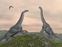 Two Brachiosaurus dinosaurs fighting by Elena Duvernay - various sizes