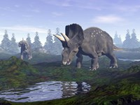 Two Nedoceratops dinosaurs walking to water puddle in the morning light by Elena Duvernay - various sizes