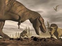 Tyrannosaurus Rex roaring at two Triceratops on rocky terrain by Elena Duvernay - various sizes