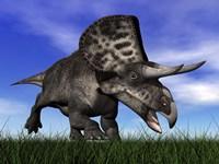 Zuniceratops dinosaur running in the grass by Elena Duvernay - various sizes