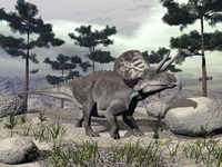 Zuniceratops dinosaur walking on a hill with large rocks and pine trees by Elena Duvernay - various sizes