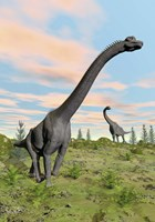 Two brachiosaurus dinosaurs in a prehistoric environment by Elena Duvernay - various sizes