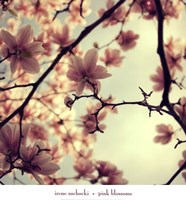 """Pink Blossoms by Irene Suchocki - 24"""" x 26"""""""
