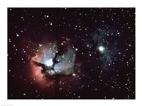 Triffid Nebula In Sagitarius - various sizes, FulcrumGallery.com brand
