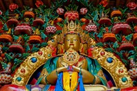 Buddha statues at Stok Palace, Ledakh, India Fine Art Print