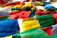 Prayer flags, Namshangla Pass, Ladakh, India Fine Art Print