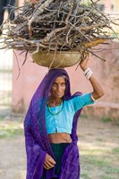 Woman Carrying Firewood on Head in Jungle of Ranthambore National Park, Rajasthan, India by Bill Bachmann - various sizes
