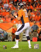 Peyton Manning 2014 Football Action Fine Art Print