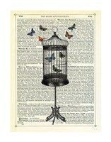 Bird Cage & Butterflies Framed Print