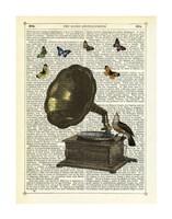 Gramophone, Bird & Butterflies Framed Print