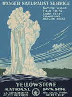 Yellowstone National Park Fine Art Print