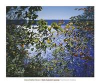 Dark Autumn Leaves Fine Art Print
