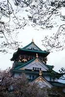 Osaka Castle and Cherry Blossom Trees, Osaka, Japan by Jaynes Gallery - various sizes