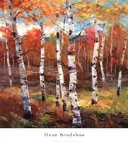 Autumn Dance 2 Fine Art Print