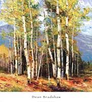 Spring Mountain Fine Art Print
