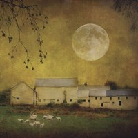 Sheep Under a Harvest Moon Fine Art Print