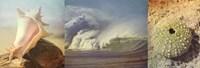 "Coastal Triptych II by Eric Elliott - 36"" x 12"""