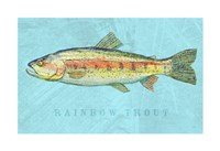 Rainbow Trout Fine Art Print