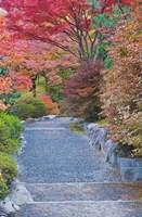 Tenryuji Temple Garden, Sagano, Arashiyama, Kyoto, Japan Fine Art Print