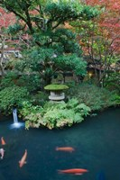 Japanese Garden, Tokyo, Japan by Rob Tilley - various sizes