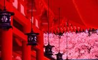 Heian Shrine in Spring, Shinto, Kyoto, Japan by Shin Terada - various sizes