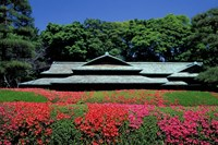 Imperial Palace, Tokyo, Japan by Rob Tilley - various sizes