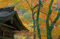 Kibune Shrine, Kyoto, Japan Fine Art Print
