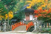 Ryuzenji Temple, Nara, Japan Fine Art Print