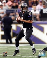 Joe Flacco 2014 Action Fine Art Print