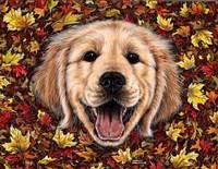 Autumn Fun by Marilyn Barkhouse - various sizes