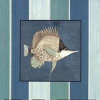 Fish on Stripes II Framed Print