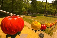 Lanterns, Haeinsa Temple Complex, Gayasan National Park, South Korea by Ellen Clark - various sizes