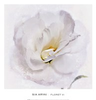 Floret VI Fine Art Print