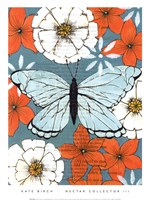"""Nectar Collector III by Kate Birch - 10"""" x 14"""""""