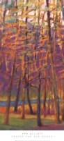 Orange and Red Woods I Framed Print