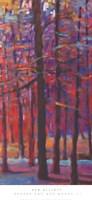 Orange and Red Woods III Fine Art Print