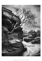 "Outcrop by Martin Henson - 13"" x 19"" - $12.99"