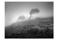 "Misty Weather VI by Martin Henson - 19"" x 13"""