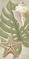 Palm Beach III by June Erica Vess - various sizes