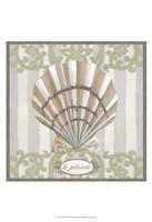Riviera Shell I Framed Print