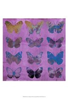 Butterflies on Magenta Fine Art Print