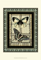 """Small Butterfly Fancy I by Vision Studio - 13"""" x 19"""""""