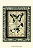 "Small Butterfly Fancy II by Vision Studio - 13"" x 19"""