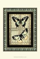 "Small Butterfly Fancy II by Vision Studio - 13"" x 19"""