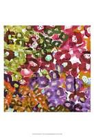 "Floral Barrage II by James Burghardt - 13"" x 19"""